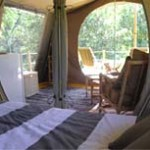 Deck Mounted Safari Tents B3